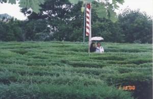 labirinto-1-1